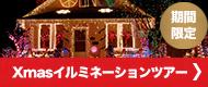 クリスマス・イルミネーションツアー